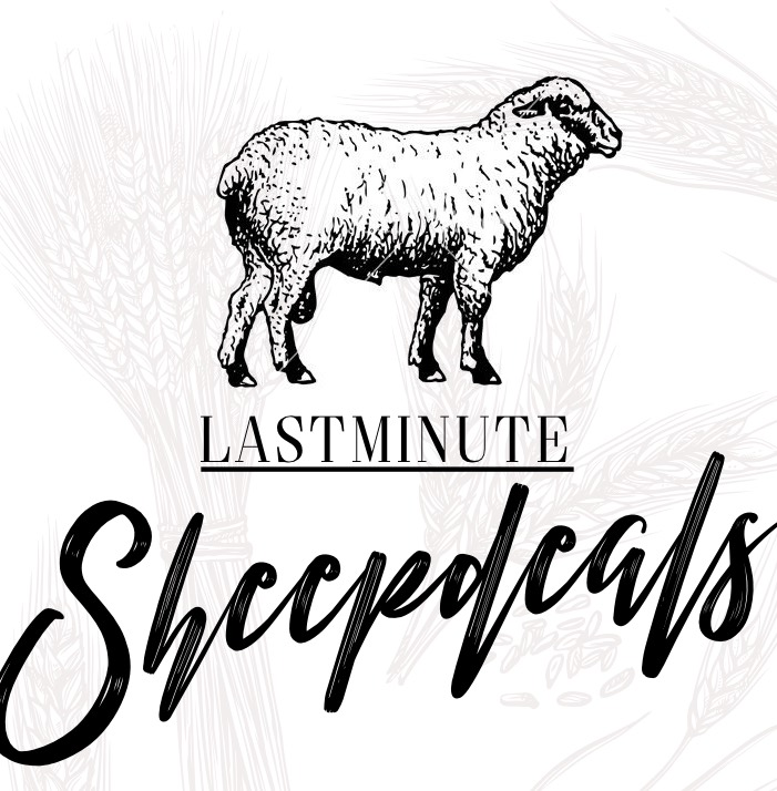 last-minute-sheepdeal